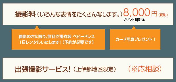 omiyamairi-price-03